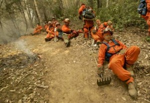 In California, an inmate firefighter can get comp.